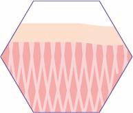 CRISTAL Skin Hautspannung wiederhergestellt